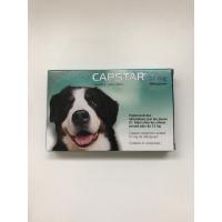 CAPSTAR 57 mg Anti-Parasitaire pour Chiens 6 comprimés