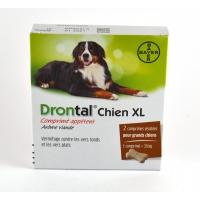 BAYER Drontal P XL Chien 2 comprimés